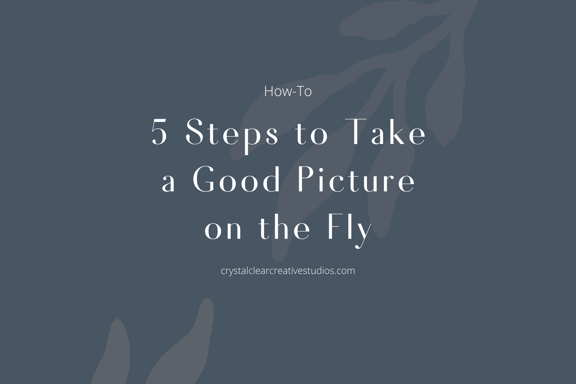5 Steps to Take a Good Picture on the Fly