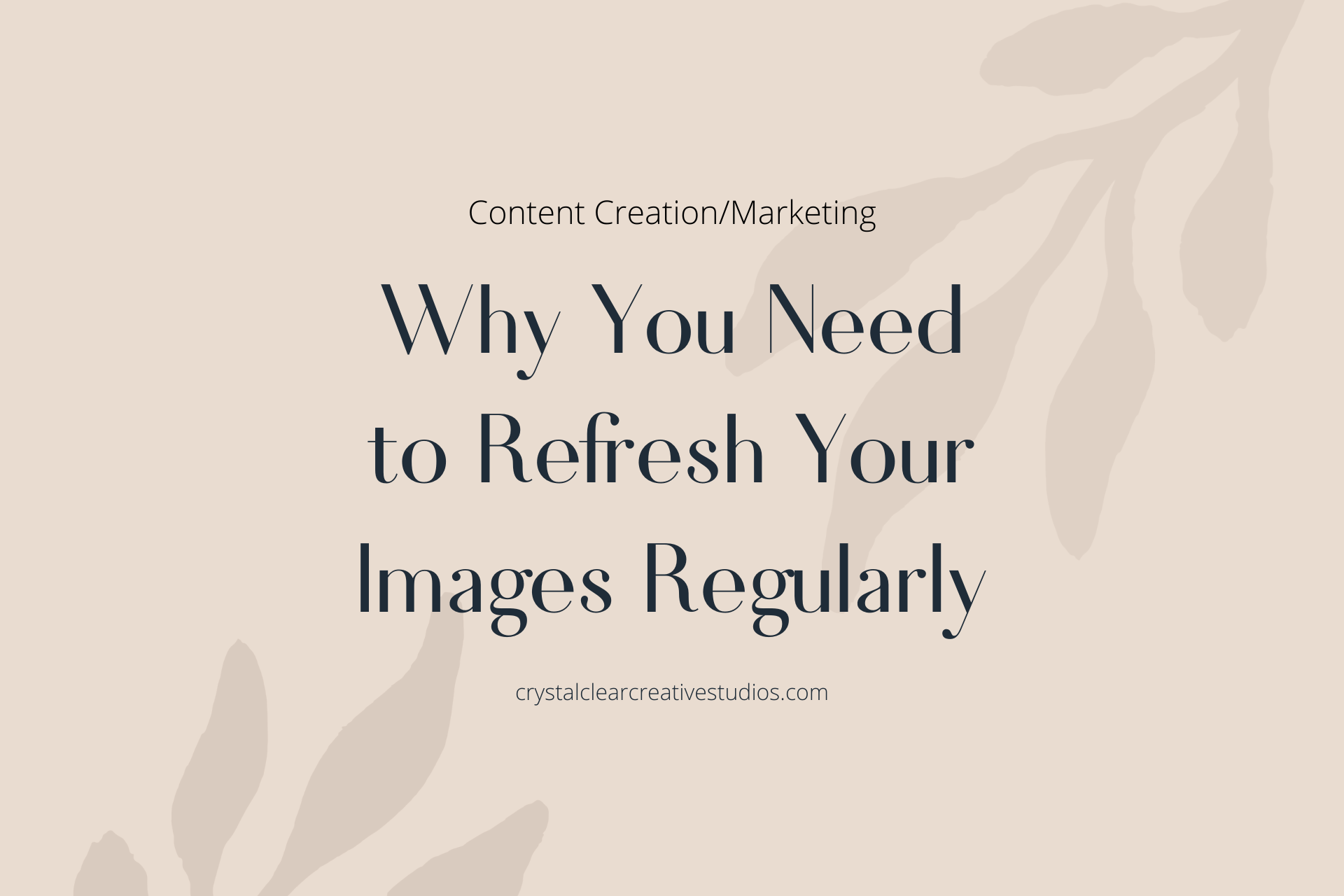 Why You Need to Refresh Your Images Regularly
