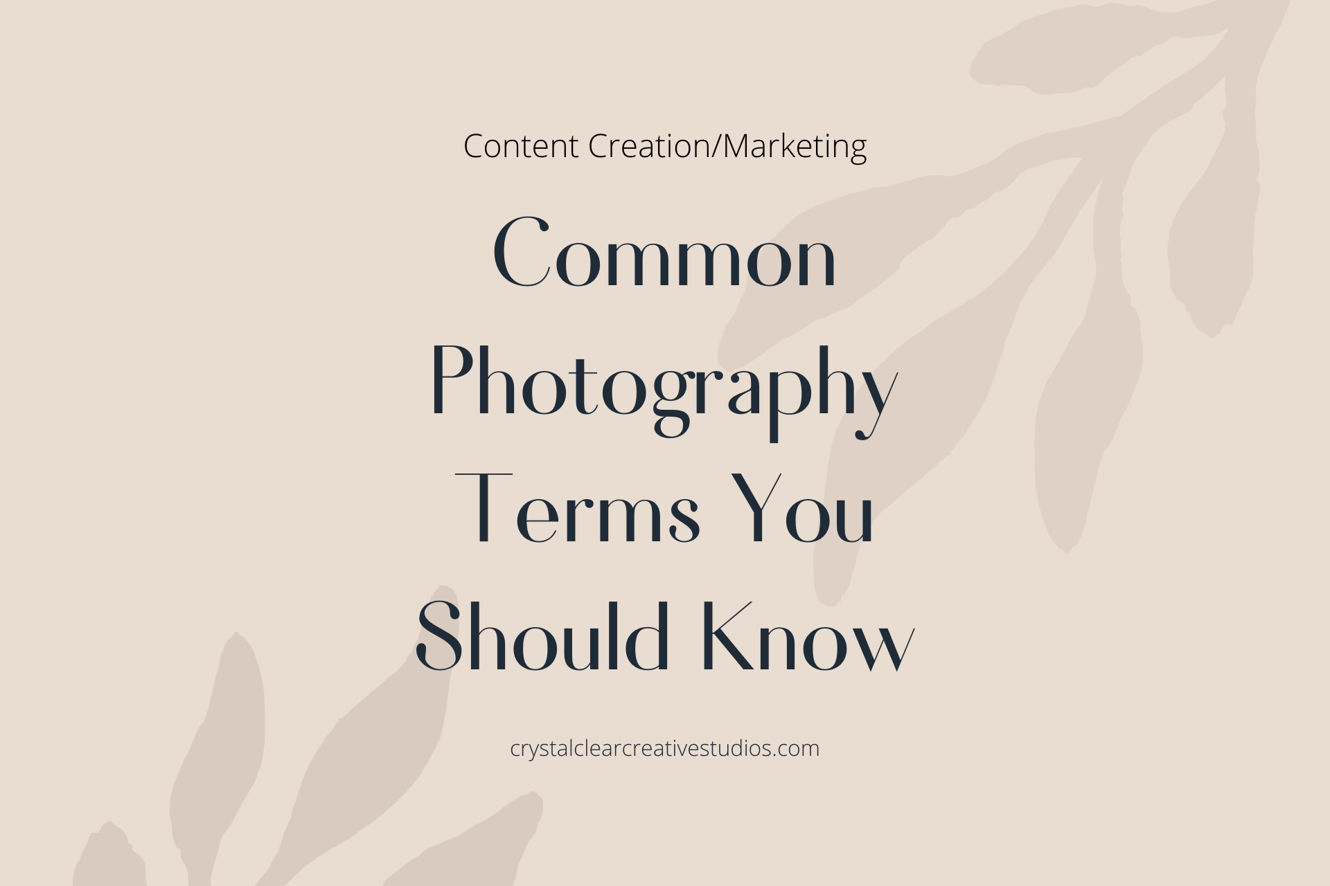 Common Photography Terms You Should Know