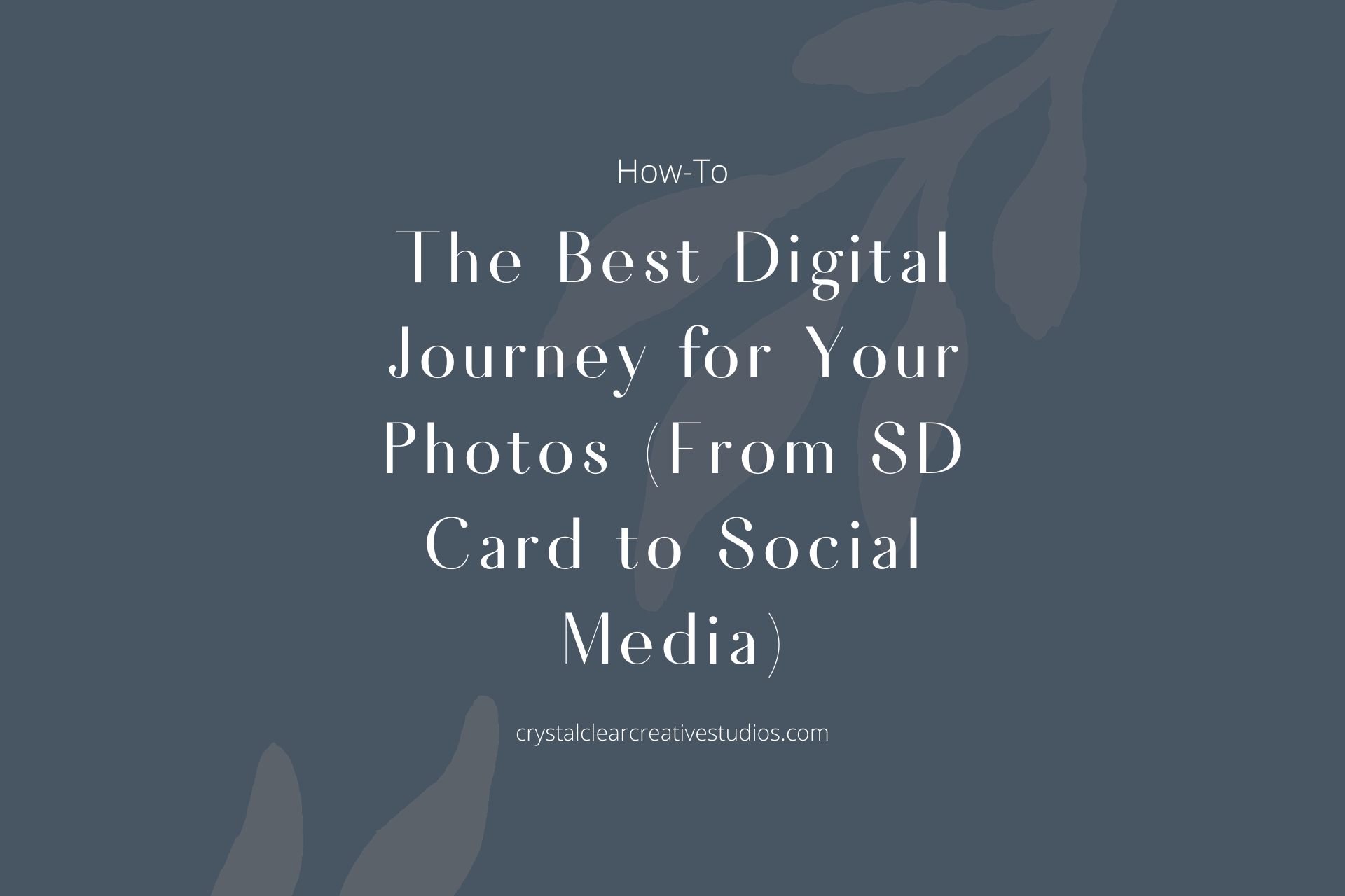 The Best Digital Journey for Your Photos (From SD Card to Social Media)